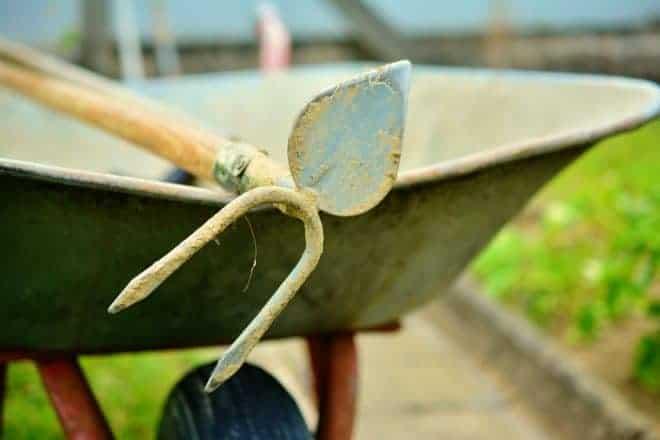 Illustration. Outil de jardinage et brouette.