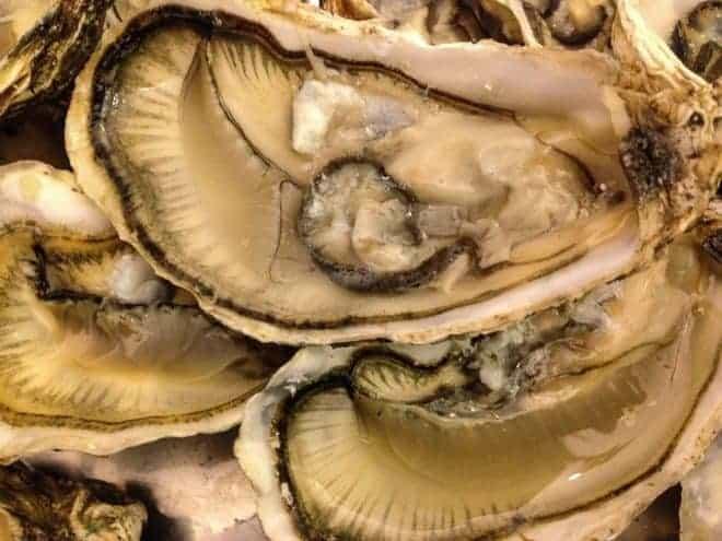 des huîtres ouvertes