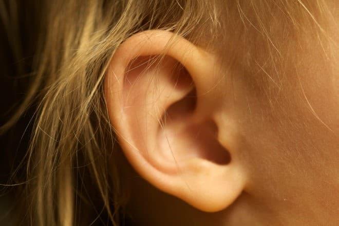 Une oreille.