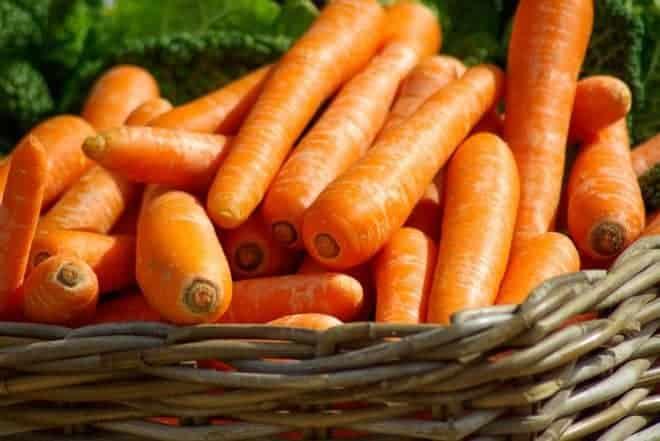 Des carottes.