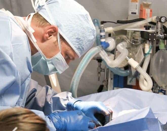 Vétérinaire, chirurgie
